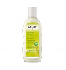 Weleda Pluimgierst milde shampoo 190 ml   € 10.87   Superfoodstore.nl