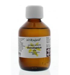 Cruydhof Eucalyptus olie 200 ml | € 19.31 | Superfoodstore.nl