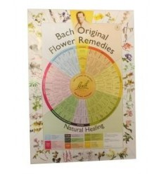 Bach remedies poster A2 | € 6.00 | Superfoodstore.nl