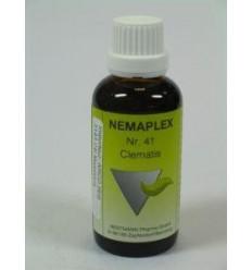 Nestmann Clematis 41 Nemaplex 50 ml | € 11.67 | Superfoodstore.nl