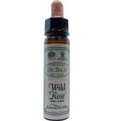 Ainsworths Wild rose Bach 10 ml | € 7.31 | Superfoodstore.nl