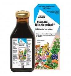Salus Floradix kindervital 250 ml | € 13.19 | Superfoodstore.nl