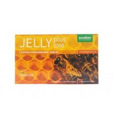 Plantapol Royal jelly plus 10 ml 20 ampullen | € 20.28 | Superfoodstore.nl